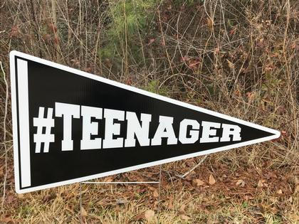 HBD - Teenager Flag
